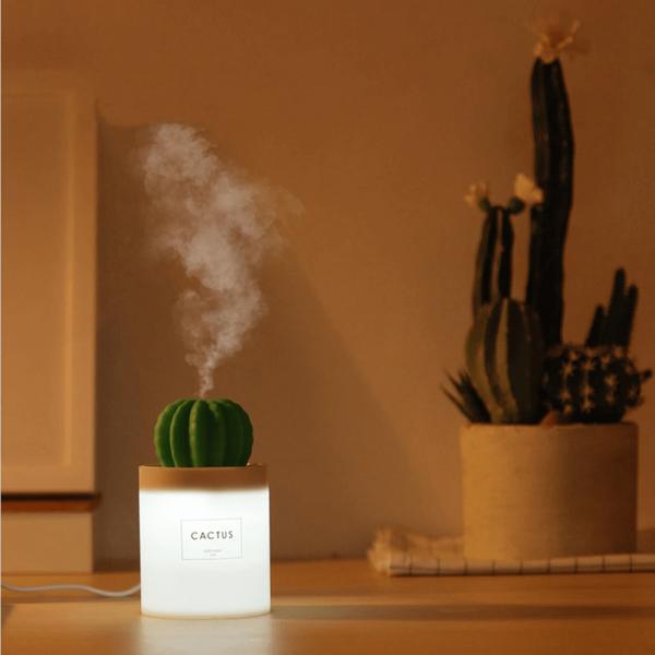 diffuseur-cactus