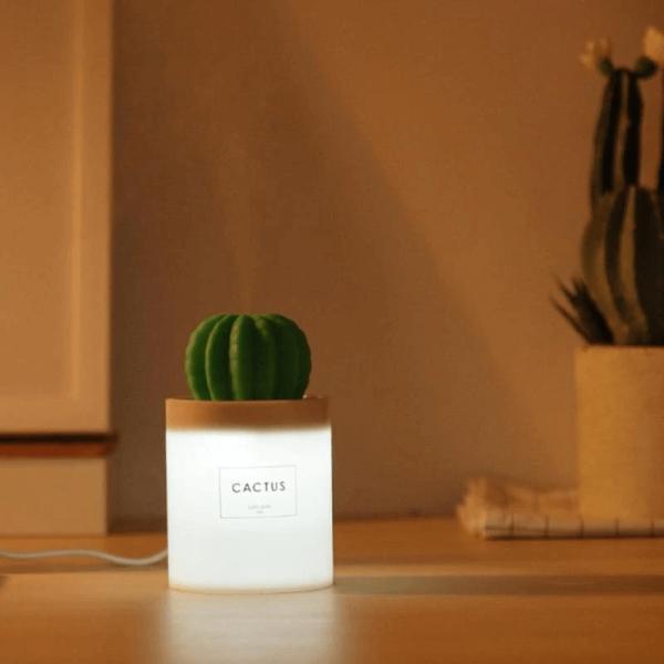 diffuseur-lampe-cactus