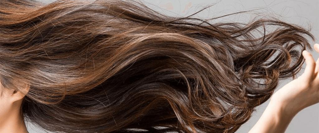 huile-essentielle-tea-tree-cheveux-poux