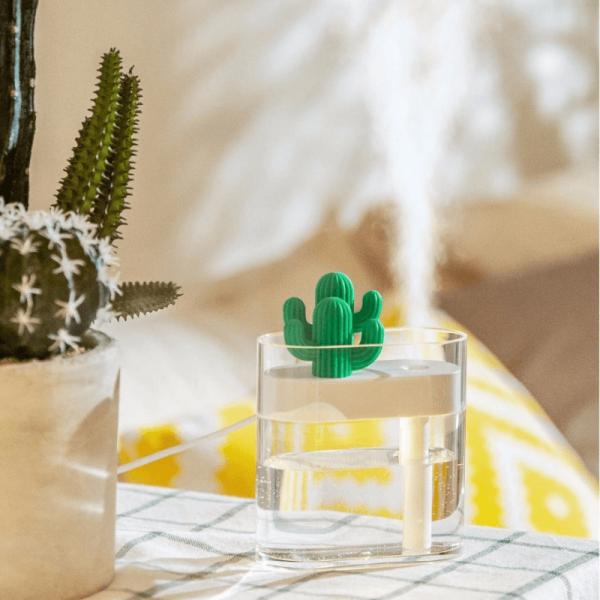 diffuseur-brumisateur-cactus