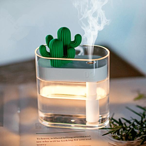 diffuseur-brumisation-cactus