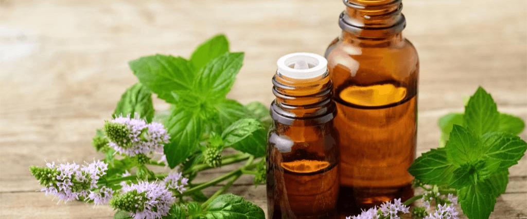 huile-essentielle-menthe-poivrée